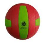 Vally Ball